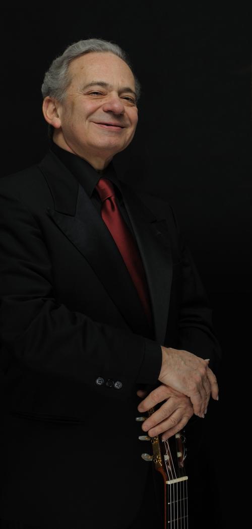 Vincenzo Saldarelli verticale